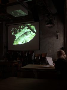Carlos Silva El paisaje que habla Videojournée MAPA Cabaret Voltaire Zurich